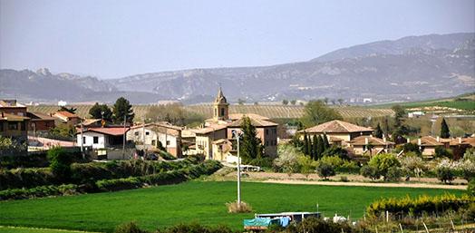 Viñedos Ollauri
